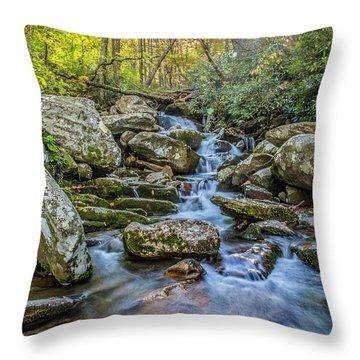 Autumn Sparkle Throw Pillow