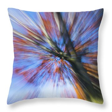 Autumn Splash Throw Pillow