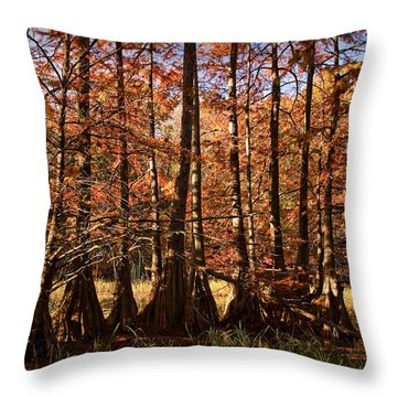 Throw Pillow featuring the photograph Autumn Splendor At Lake Murray by Tamyra Ayles