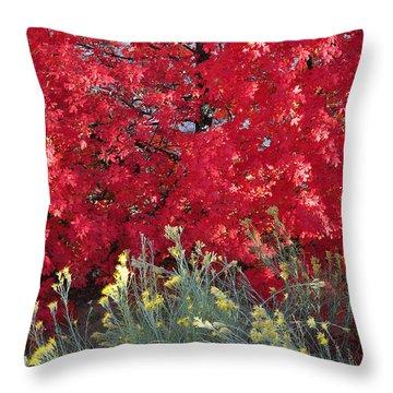 Autumn Splendor In Zion National Park Throw Pillow by Bruce Gourley