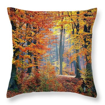 Autumn Splendour Throw Pillow