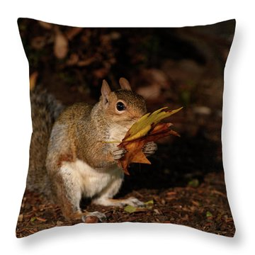 Autumn Squirrel Throw Pillow