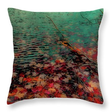 Throw Pillow featuring the photograph Autumn Submerged by David Patterson