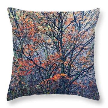 Autumn Sugar Maple In Fog Throw Pillow by Thomas R Fletcher
