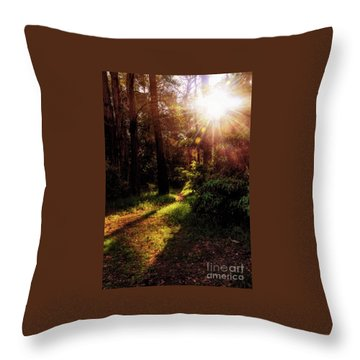 Throw Pillow featuring the photograph Autumn Sunburst And Shadows By Kaye Menner by Kaye Menner
