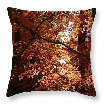 Autumn Sunshine Poster Throw Pillow by Carol Groenen