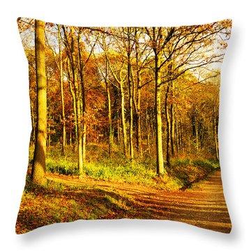 Autumn Throw Pillow by Svetlana Sewell
