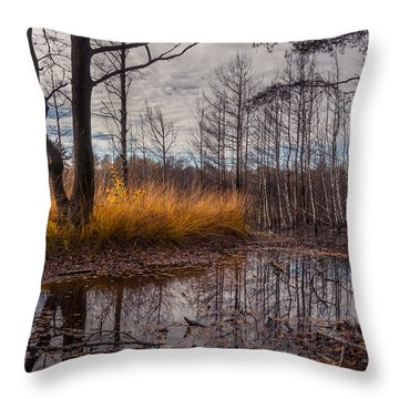 Autumn Swamp Throw Pillow
