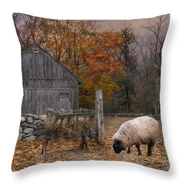 Autumn Sweater Throw Pillow