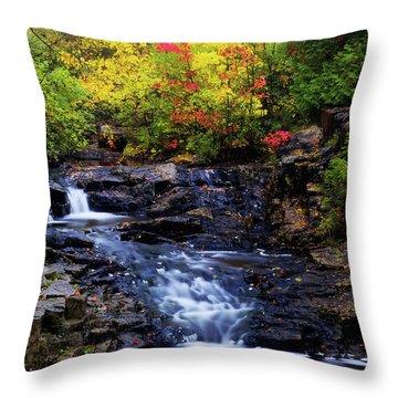 Autumn Swirls Throw Pillow