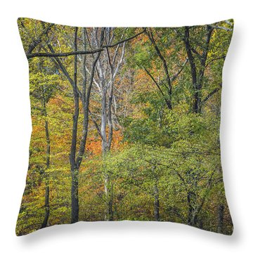 Autumn Tapestry Throw Pillow
