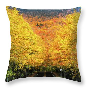 Autumn Tree Tunnel Throw Pillow