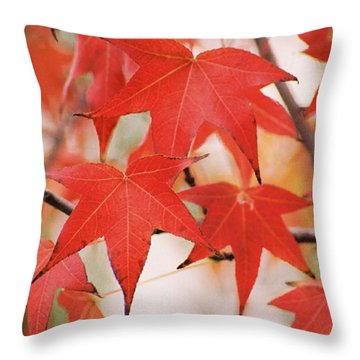 Autumn Trio Throw Pillow