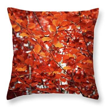 Autumn Triumph Throw Pillow
