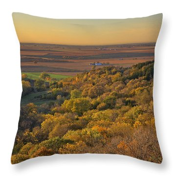 Autumn View At Waubonsie State Park Throw Pillow by Edward Peterson