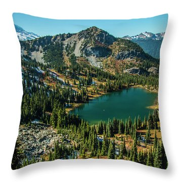 Autumn View Throw Pillow