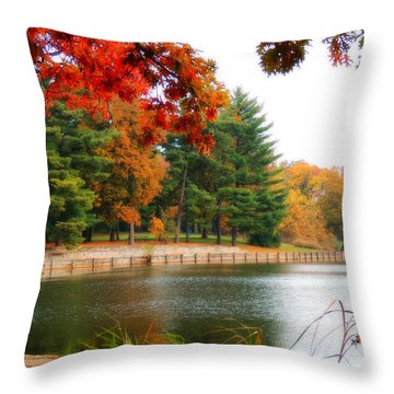 Autumn View Throw Pillow by Teresa Schomig
