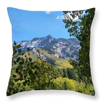 Autumn View Through Aspen Leaves Throw Pillow