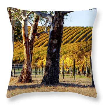 Throw Pillow featuring the photograph Autumn Vines by Bill Robinson