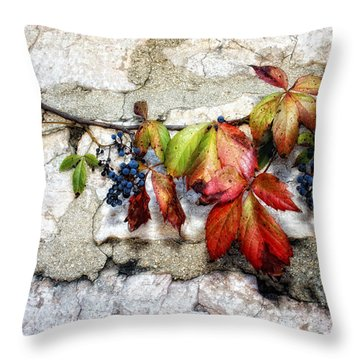 Autumn Vines Throw Pillow