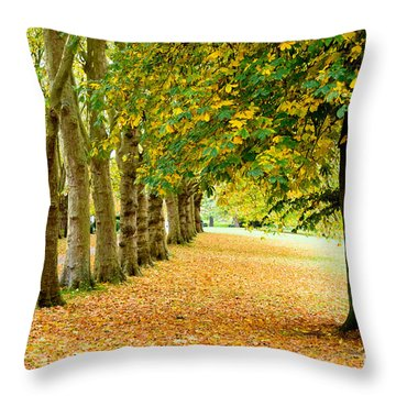 Throw Pillow featuring the photograph Autumn Walk by Colin Rayner