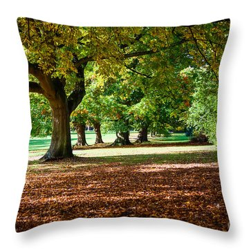 Throw Pillow featuring the photograph Autumn Walk In The Park by Colin Rayner