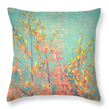 Throw Pillow featuring the photograph Autumn Wall by Ari Salmela
