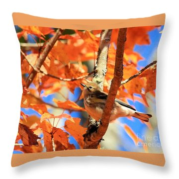 Autumn Warbler Throw Pillow by Debbie Stahre