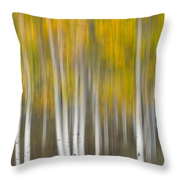 Throw Pillow featuring the photograph Autumn Was A Blur by Patricia Davidson