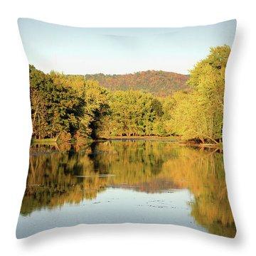Autumn Water Throw Pillow