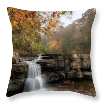 Autumn Water Throw Pillow