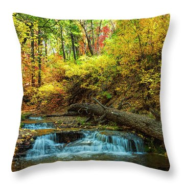 Autumn Waterfall Throw Pillow by Anthony Citro