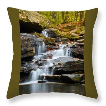 Autumn Waterfall Throw Pillow by Shelby  Young