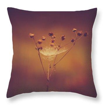 Autumn Web Throw Pillow by Shane Holsclaw