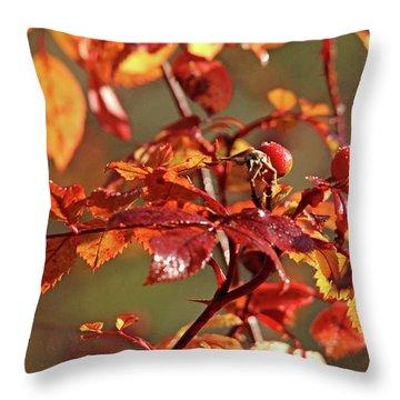 Autumn Wild Rose Hips Throw Pillow