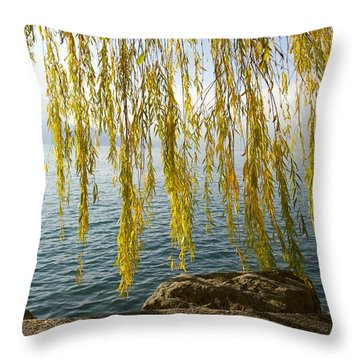 Autumn Willow Throw Pillow by Colleen Williams