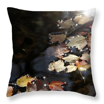 Autumn With Leaves On Water Throw Pillow