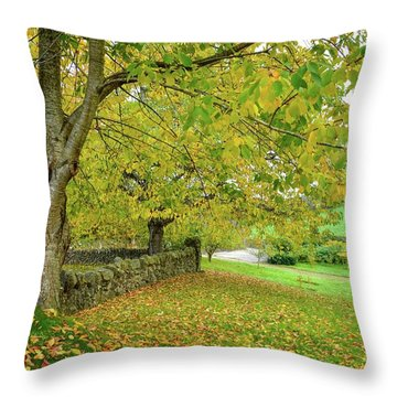 Autumn Wonderland Throw Pillow