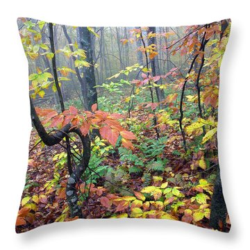 Autumn Woodland Throw Pillow by Thomas R Fletcher