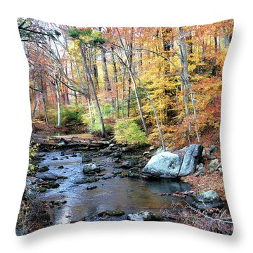 Autumn Woodlands Throw Pillow
