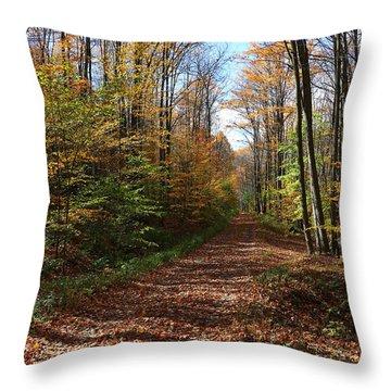Autumn Woods Road Throw Pillow