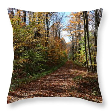 Throw Pillow featuring the photograph Autumn Woods Road by Rick Morgan