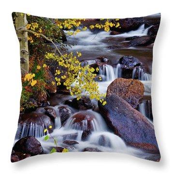Throw Pillow featuring the photograph Autumn Zen by John De Bord