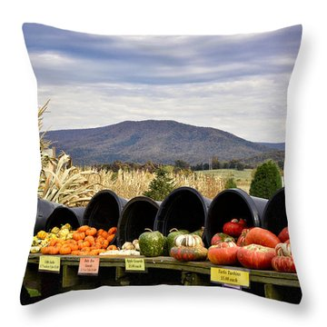 Autumnal Abundance In The Blue Ridge Mountains - Virginia Throw Pillow by Brendan Reals