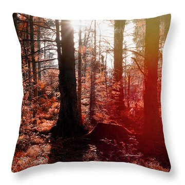 Autumnal Afternoon Throw Pillow