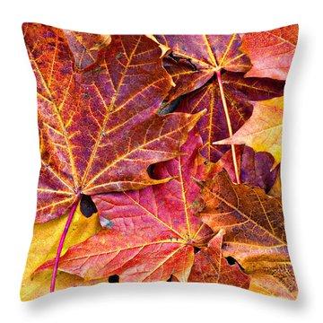 Autumnal Carpet Throw Pillow by Meirion Matthias