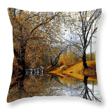 Throw Pillow featuring the photograph Autumnal by Elfriede Fulda