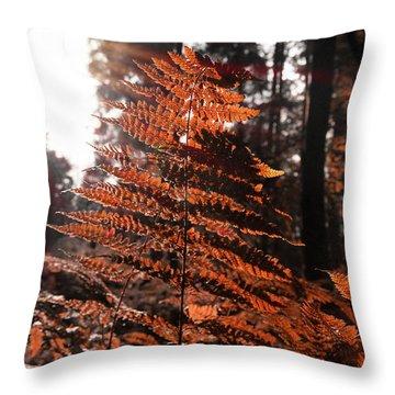 Autumnal Evening Throw Pillow