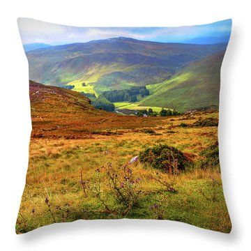 Throw Pillow featuring the photograph Autumnal Hills. Wicklow. Ireland by Jenny Rainbow