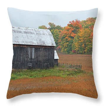 Throw Pillow featuring the photograph Autumnal.. by Nina Stavlund